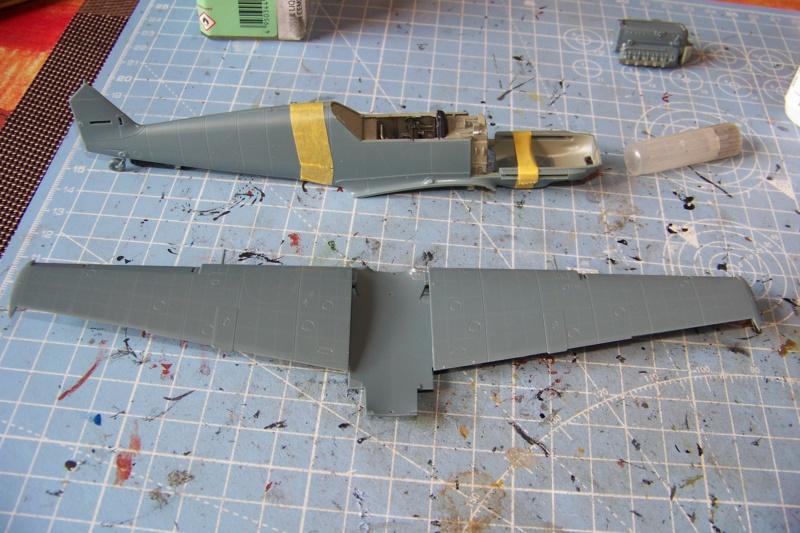 sur l' établi Bf 109 E3a 1/48 Eduard  Fini 100_8246