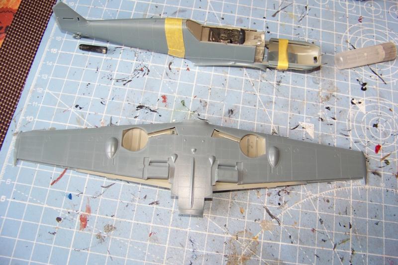 sur l' établi Bf 109 E3a 1/48 Eduard  Fini 100_8247