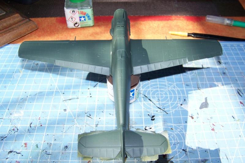 sur l' établi Bf 109 E3a 1/48 Eduard  Fini - Page 3 100_8366