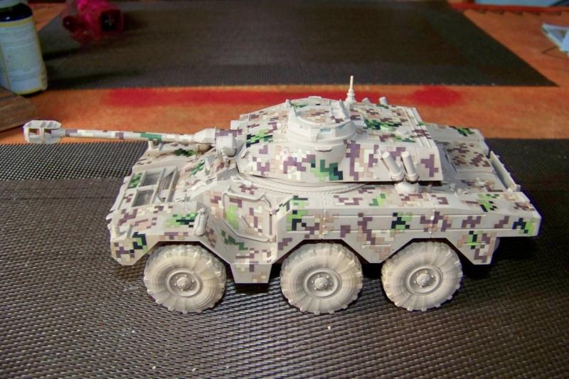 ERC 90 Lynx 1/35 Tiger Model FINI - Page 2 100_8518