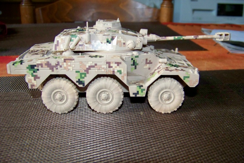 ERC 90 Lynx 1/35 Tiger Model FINI - Page 2 100_8519