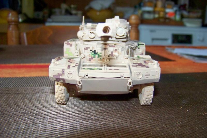 ERC 90 Lynx 1/35 Tiger Model FINI - Page 2 100_8520