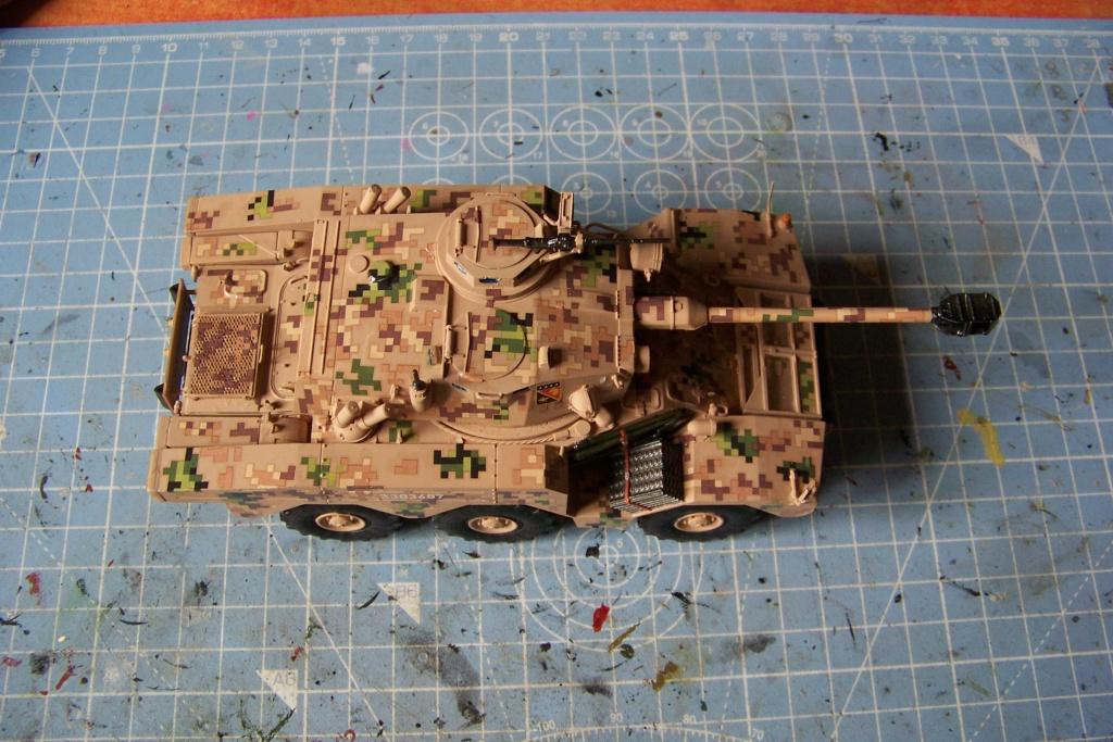 ERC 90 Lynx 1/35 Tiger Model FINI - Page 2 100_8529
