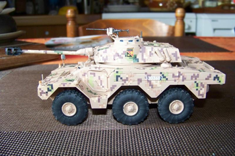 ERC 90 Lynx 1/35 Tiger Model FINI - Page 2 100_8531