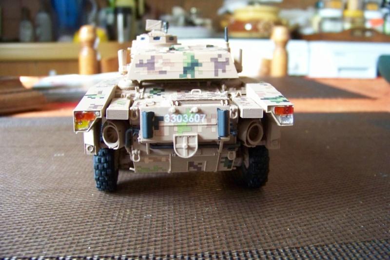 ERC 90 Lynx 1/35 Tiger Model FINI - Page 2 100_8533
