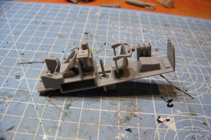 """Yokosuka D4Y1/2 Suisei  """"Judy """" Fine Model 1/48 100_8689"""
