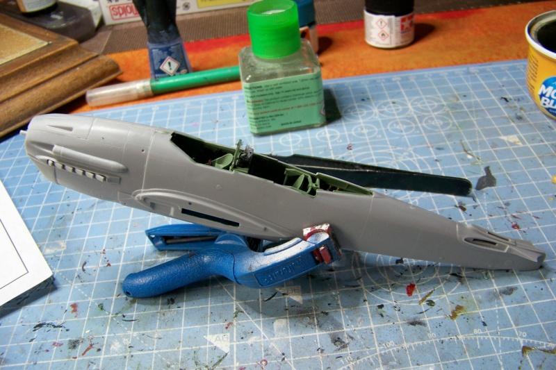 """Yokosuka D4Y1/2 Suisei  """"Judy """" Fine Model 1/48 - Page 2 100_8716"""
