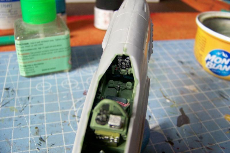 """Yokosuka D4Y1/2 Suisei  """"Judy """" Fine Model 1/48 - Page 2 100_8718"""