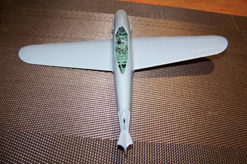 """Yokosuka D4Y1/2 Suisei  """"Judy """" Fine Model 1/48 - Page 2 100_8723"""