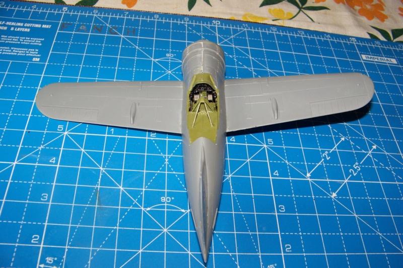 Brewster Buffalo B-339B ( Tamiya 1/48)FINI 100_9567