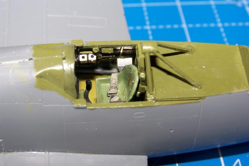 Brewster Buffalo B-339B ( Tamiya 1/48)FINI 100_9571