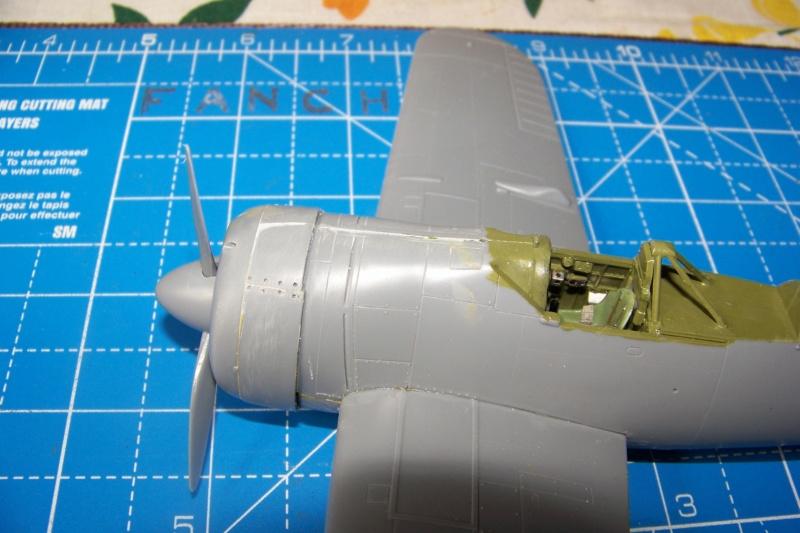 Brewster Buffalo B-339B ( Tamiya 1/48)FINI 100_9572