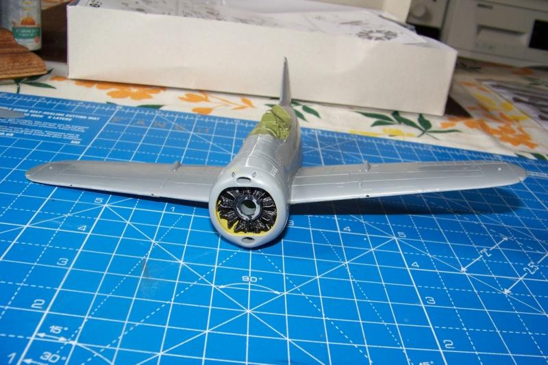 Brewster Buffalo B-339B ( Tamiya 1/48)FINI 100_9573