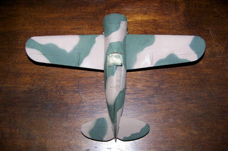 Brewster Buffalo B-339B ( Tamiya 1/48)FINI 100_9679