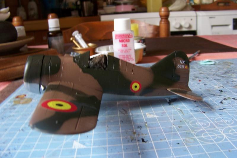 Brewster Buffalo B-339B ( Tamiya 1/48)FINI - Page 2 100_9695