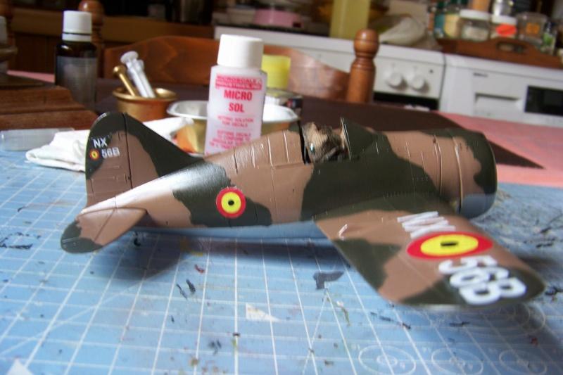 Brewster Buffalo B-339B ( Tamiya 1/48)FINI - Page 2 100_9697