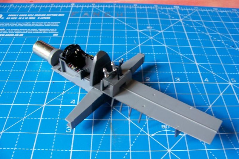 Dornier Do 335 A12 Pfeil  ANR ( Tamiya 1/48) 100_9730
