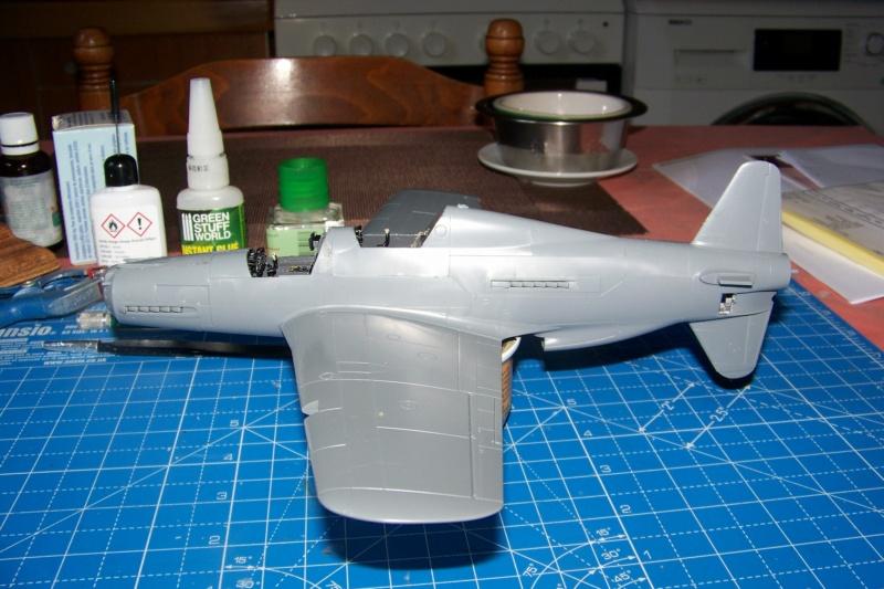 Dornier Do 335 A12 Pfeil  ANR ( Tamiya 1/48) 100_9734