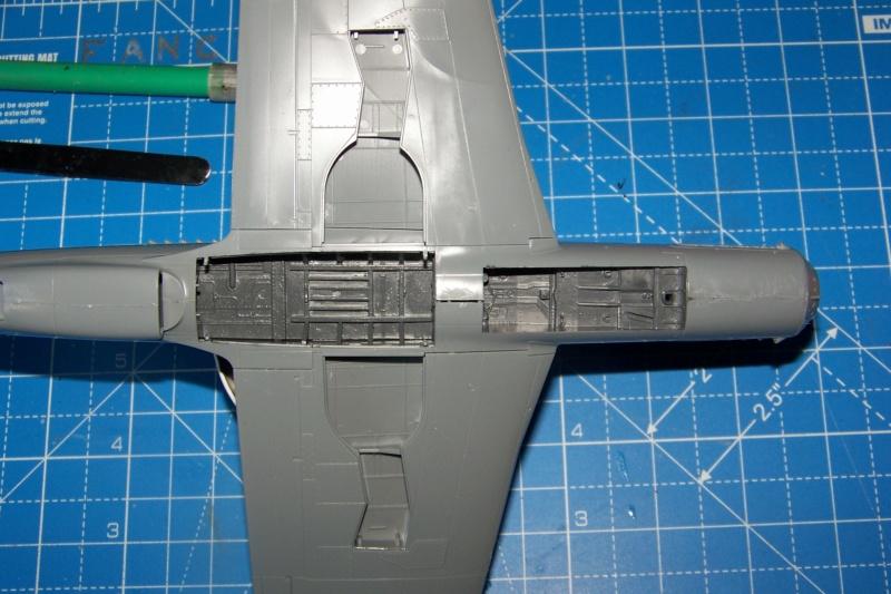Dornier Do 335 A12 Pfeil  ANR ( Tamiya 1/48) 100_9736