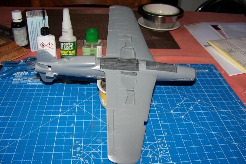 Dornier Do 335 A12 Pfeil  ANR ( Tamiya 1/48) 100_9738
