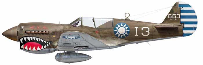 From the box - Curtiss P-40N Warhawk [Eduard 1/48] 10_1310