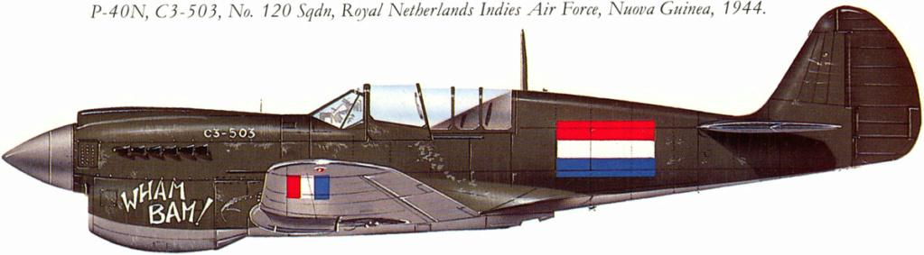 From the box - Curtiss P-40N Warhawk [Eduard 1/48] 144_610