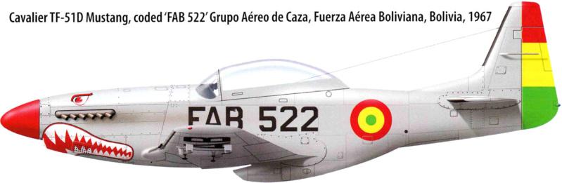 """ Frenesi "" P-51D5 ( Eduard 1/48) Fini - Page 4 182_210"