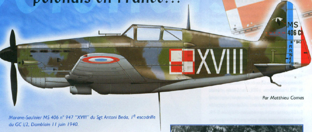 Morane-saulnier Ms406 AZ-model 1/48 21_1511