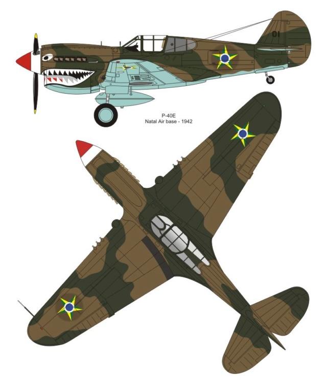 Curtiss H81A1(P40A)   Airfix 1/48 Fini 26_310
