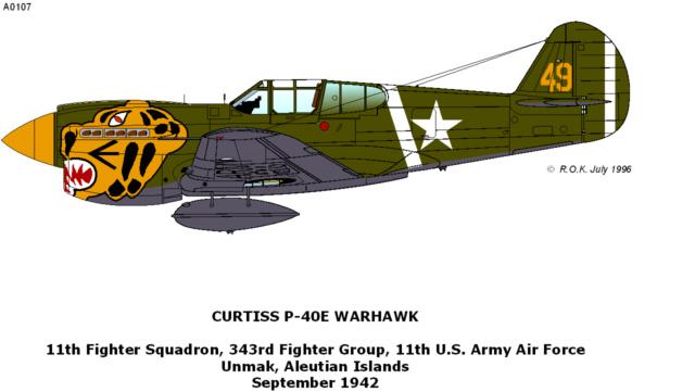 Curtiss H81A1(P40A)   Airfix 1/48 Fini 3_1710