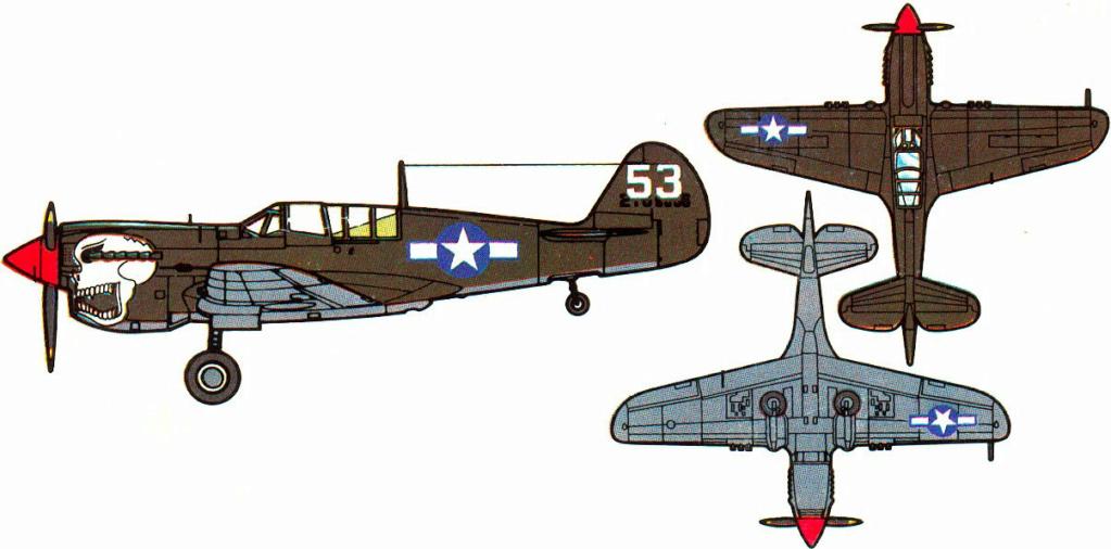 From the box - Curtiss P-40N Warhawk [Eduard 1/48] 3_2410