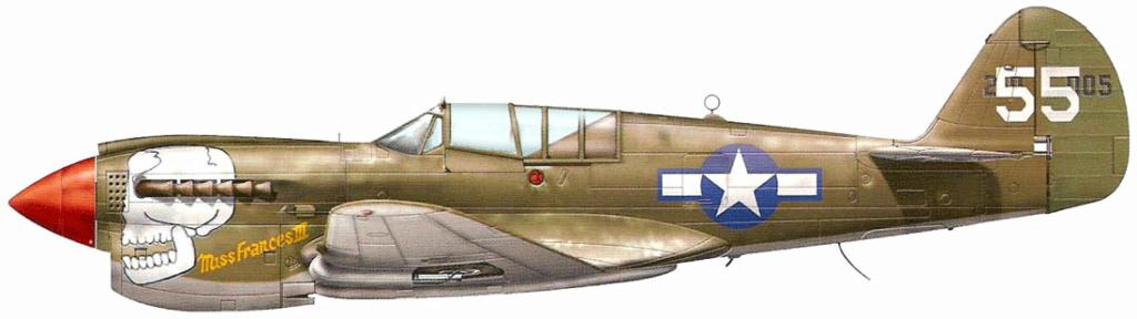 From the box - Curtiss P-40N Warhawk [Eduard 1/48] 3_9010