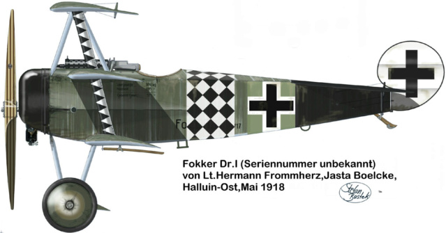 L' oiseau blessé d'une flèche-[RODEN] Fokker DR1 1/32 (ROD 605) - Page 2 59_1110