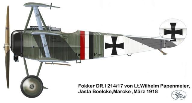 L' oiseau blessé d'une flèche-[RODEN] Fokker DR1 1/32 (ROD 605) - Page 2 59_1311