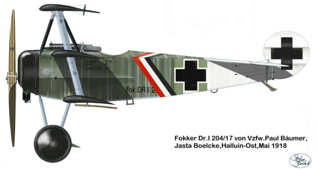 L' oiseau blessé d'une flèche-[RODEN] Fokker DR1 1/32 (ROD 605) - Page 2 59_1510
