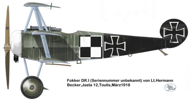 L' oiseau blessé d'une flèche-[RODEN] Fokker DR1 1/32 (ROD 605) - Page 2 59_2310