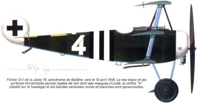 L' oiseau blessé d'une flèche-[RODEN] Fokker DR1 1/32 (ROD 605) - Page 2 59_4510