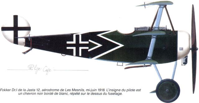 L' oiseau blessé d'une flèche-[RODEN] Fokker DR1 1/32 (ROD 605) - Page 2 59_4610