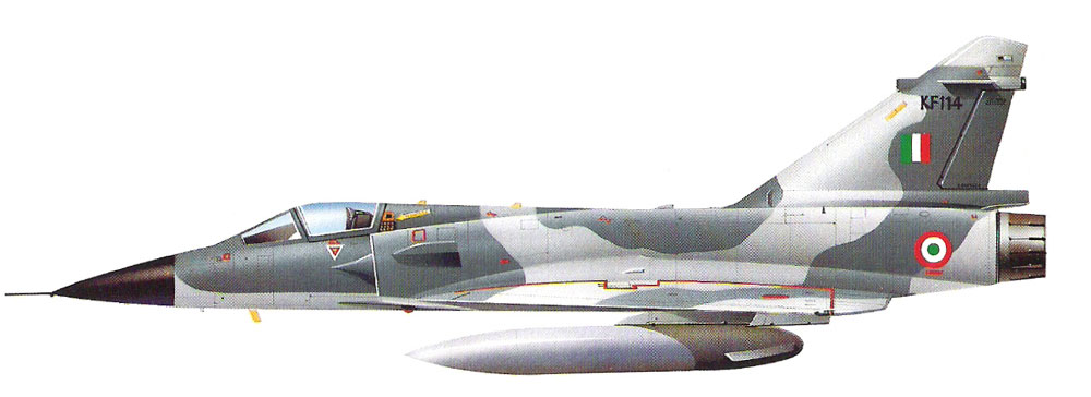 MIRAGE 2000 HELLER 1/72 - Page 2 72_110