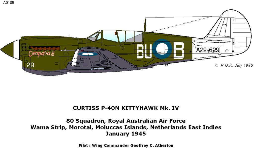 From the box - Curtiss P-40N Warhawk [Eduard 1/48] 81_210