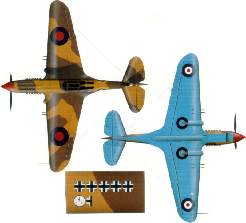 Curtiss tomahawk 1/48 9_25_b12