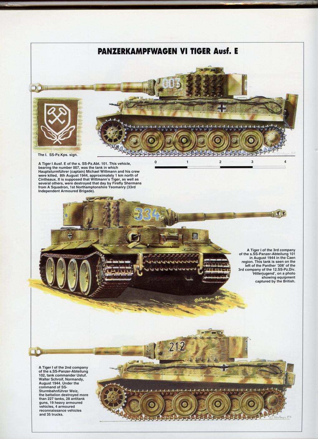 CHAR TIGRE I SDKFZ 181 AUSF e  1/25 E51d3810