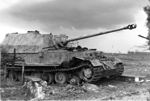 Ferdinand - Italeri 1/35 (FINI) - Page 2 Tank_510
