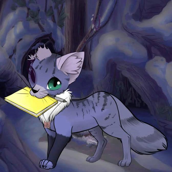 name pending Kitty10