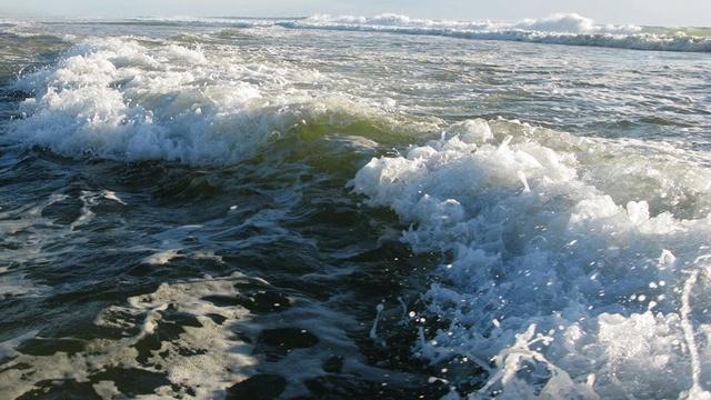 Le Porge Ocean dans toute sa splendeur vu par Yves Boutsdebois 14192611