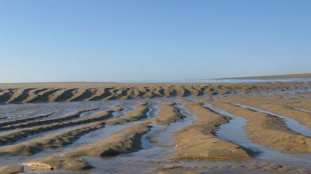 Le Porge Ocean dans toute sa splendeur vu par Yves Boutsdebois 14199610
