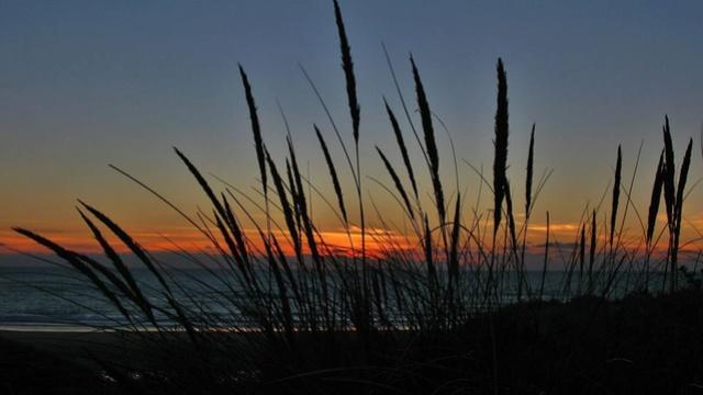 Le Porge Ocean dans toute sa splendeur vu par Yves Boutsdebois 14199710