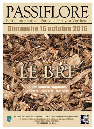 Foire aux plantes le 16 Octobre 2016 à Vertheuil 14429410