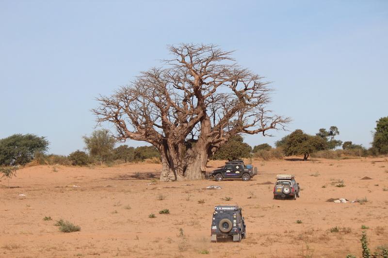 Mauritanie Sénégal Guinée Img_1212