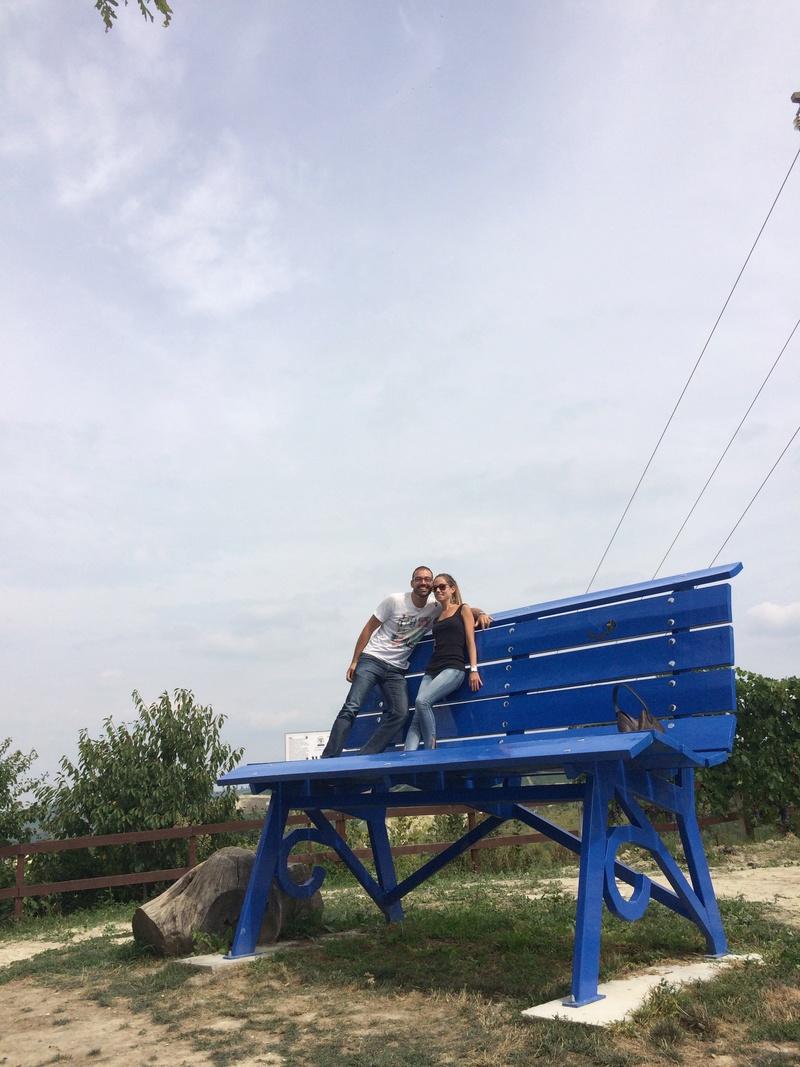 my Elise story: diario di un'avventura:  S2 silver / S3 136cv / S3 20th - Pagina 6 Img_6011